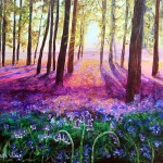 Sunset Bluebells